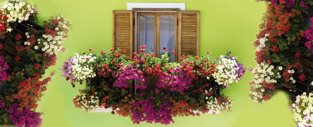 Balcons fleuris concours